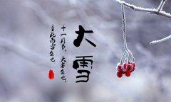 舌尖上的二十四节气-大雪篇【西红柿炖牛腩】