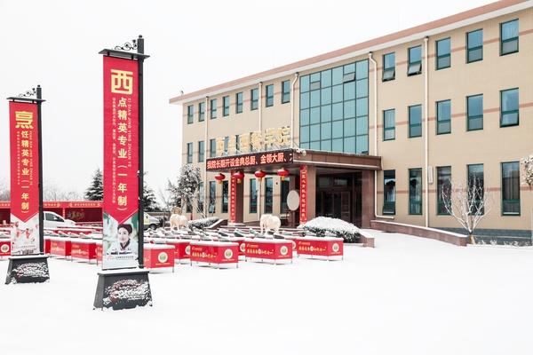山东新东方校园冬季美景